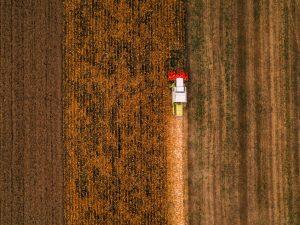produtividade do solo